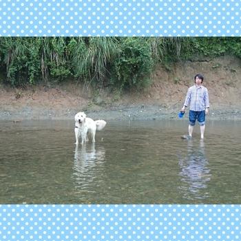 PhotoGrid_1439638214857.jpg