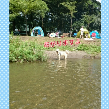 PhotoGrid_1439646094808.jpg