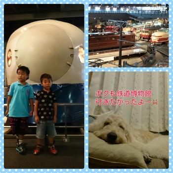 PhotoGrid_1442650089437.jpg