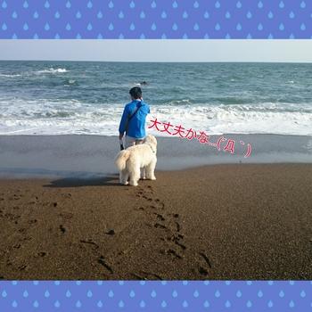 PhotoGrid_1446210745933.jpg