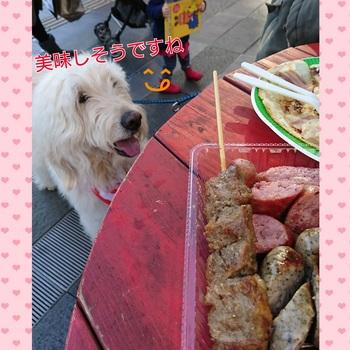 PhotoGrid_1482508743961.jpg