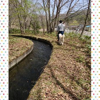 PhotoGrid_1494770711707.jpg