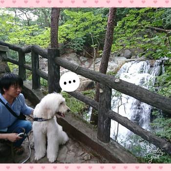 PhotoGrid_1504611498526.jpg