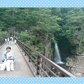 PhotoGrid_1504611668557.jpg